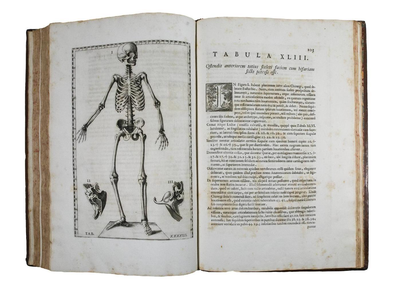 De vita libri tres (De triplici vita), Apologia, Quod